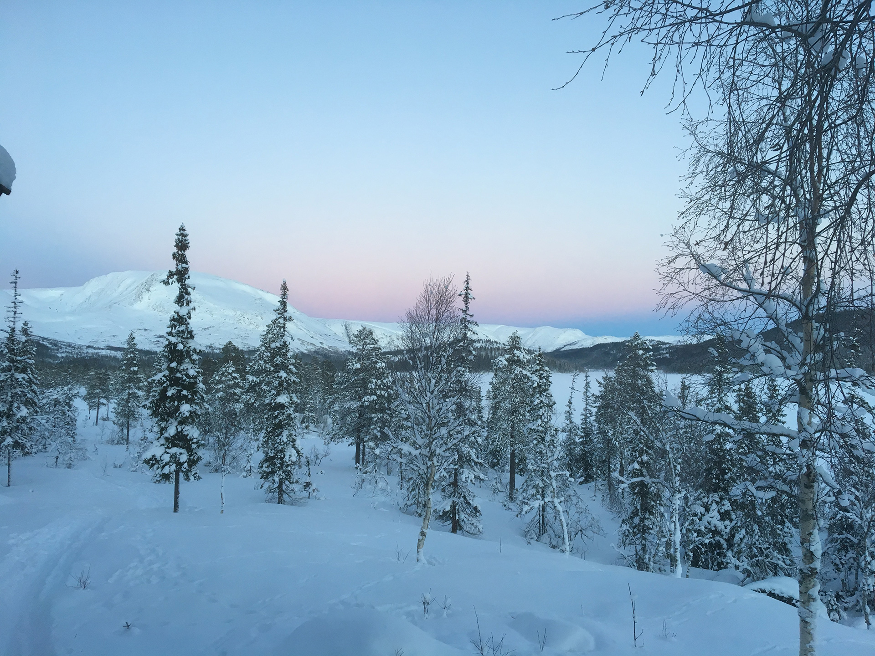 Picture of a winter landscape
